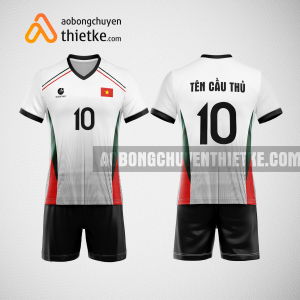 Mẫu quần áo bóng chuyền thiết kế tại cà mau giá rẻ BCTK61 nam